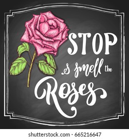 Hand-drawn rose flower colorful sketch, with white lettering slogan Stop and smell the roses on black chalkboard background. Vector illustration.