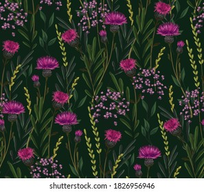 Hand-drawn seamless vector pattern. Dense thickets of field and meadow plants: grasses, foliage, Thistle flowers, small purple flowers. Dark background.