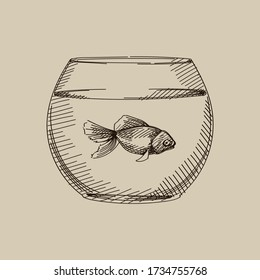 Hand-drawn sketch of fish tank on old background. Domestic animal. Home pet. Gold fish in a small tank. Simple tank with fish. Fish in the aquarium