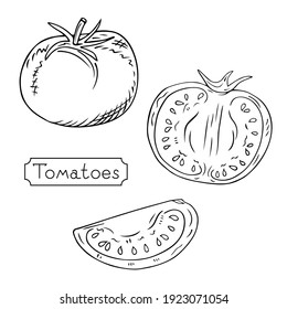 Hand-drawn tomatoes. Whole, half and slice. Sketch of a vegetarian food, a product at an agricultural market, an element for a label or poster. Vector engraving illustration.