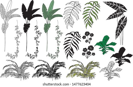 Handdrawn tropical leaves vector set