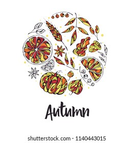 Hand-drawn vector illustration - autumn elements - berries and leaves