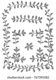 Hand-drawn vector line art images of holly branches arranged as frames and borders.