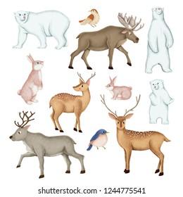 Hand-drawn wild animal set
