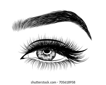 Hand-drawn woman's eye with perfectly shaped eyebrows and full lashes. Idea for business visit card, typography vector.Perfect salon look
