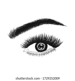 Hand-drawn woman's eyes. Idea for business cards, banners, signboards. Vector illustration. Perfect eyelashes, eyebrows