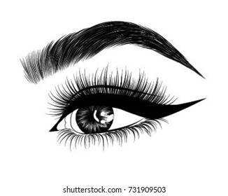 Hand-drawn woman's fresh makeup look with perfectly perfectly shaped eyebrows and extra full lashes. Idea for business visit card, typography vector.Perfect salon look