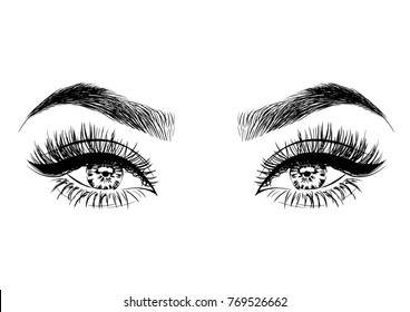 Hand-drawn woman's luxurious eyes with perfectly shaped eyebrows and full lashes