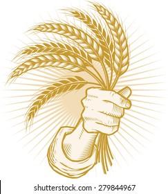 Handfull of Wheat