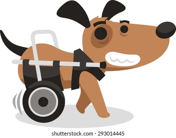 handicapped disabled agility dog wheelchair