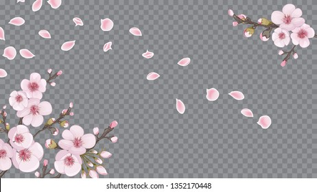Handmade background in Chinese style. Pink on transparent background. The idea of textile design, wallpaper, packaging, printing. Spring frame horizontal of sakura flowers.