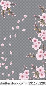 Handmade background in the Japanese style. Magenta on transparent background. Flying sakura flowers.