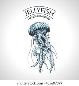 Handmade sketch isolated jellyfish, marine animals - Stock Vector