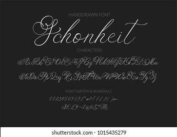 Handrawn vector alphabet. Modern calligraphic font. Brush painted letterswith decorative swashes.