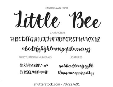 Handrawn vector alphabet. Modern calligraphic font. Brush painted abc with ligatures.