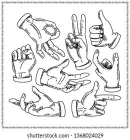 Hands doodles. Set of hands in different gestures.