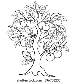 Hands drawing apple tree for the anti stress coloring page.