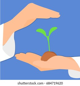 Hands hold the sprout and protect it