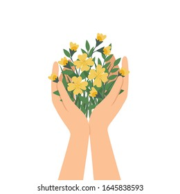 Hands holding flower, hand save nature for life concept.