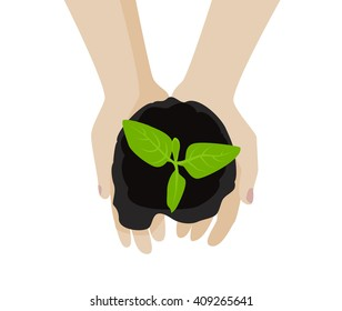 Hands holding sprout plant in soil. Top view. Vector illustration.