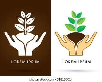 Hands holding tree with leaf graphic vector