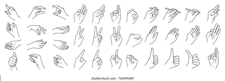 Hands isolated on a white background, Hand collection, vector outline illustration, Set of finger