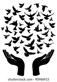 hands releasing peace pigeon