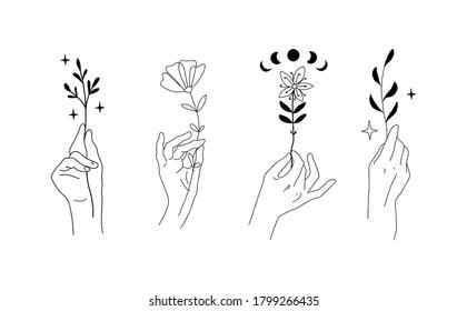 Hands set with flowers and plants. Graceful female hands, mystical symbols for logo, esoteric boho design, minimalistic linear emblem for wedding card. Doodle vector illustration