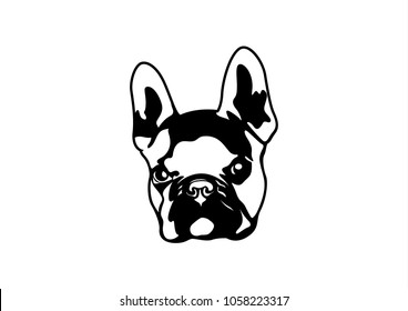 Handsome Brown French Bulldog Logo. This is Frenchie Series in Black & White  style. You can bring him and create him on your product or any you want. It's suitable for use as a logo, symbol, signage.