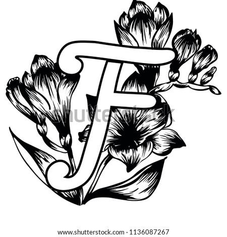 Handwritten Capital Letter F Floral Alphabet Stock Vector Royalty