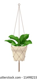 Hanging house plants in pot. Vector isolated on white.