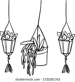 Hanging potted flowers.  Doodle. Vector illustration on white background. For cards, posters, stickers  and professional design.