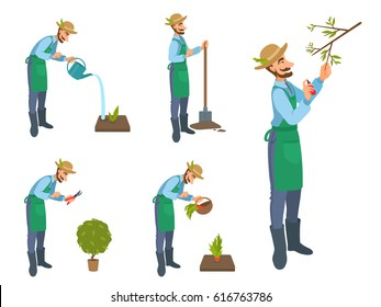 Happy cartoon bearded man watering, cut, treat, sprays, harvests, gardening, cultivate. Set of vector illustrations isolated on white. Gardener with pruning shears, shovel, spray, watering can, basket