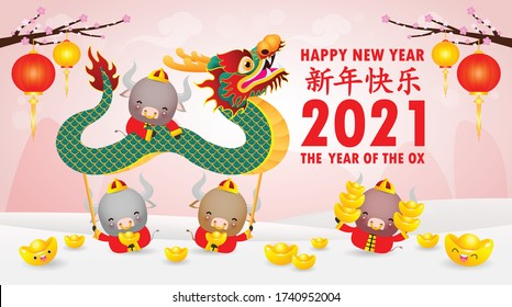 Happy Chinese new year 2021 of the ox zodiac poster design with Cute cow firecracker and dragon dance. the year of the ox greeting card holidays isolated on Background, Translation: Happy New Year.