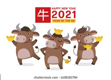 Happy Chinese new year greeting card. 2021 Ox zodiac. Cute cow and gold money. Animal holidays cartoon character. Translate: Ox. -Vector
