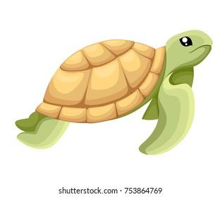 Turtle Clipart Images Stock Photos Vectors Shutterstock