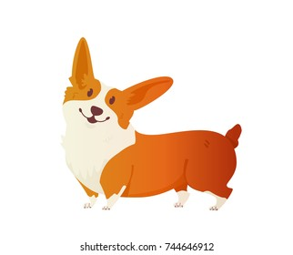 Happy dog Welsh Corgi. The style flat. The dog is a symbol of 2018