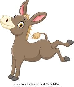 Happy donkey isolated on white background