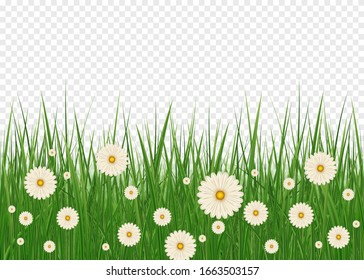 Happy Easter background with realistic Easter grass. Easter decoration element with spring grass and meadow flowers