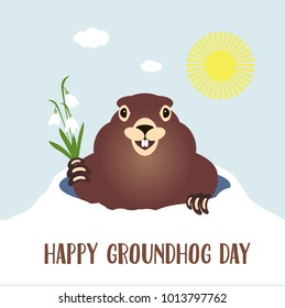 Happy groundhog day card. Holiday winter and spring banner rodent february spring sun, flower snowdrop clouds woodchuck, cute shadow cartoon vector illustration, hole fun. Character animal mammal.