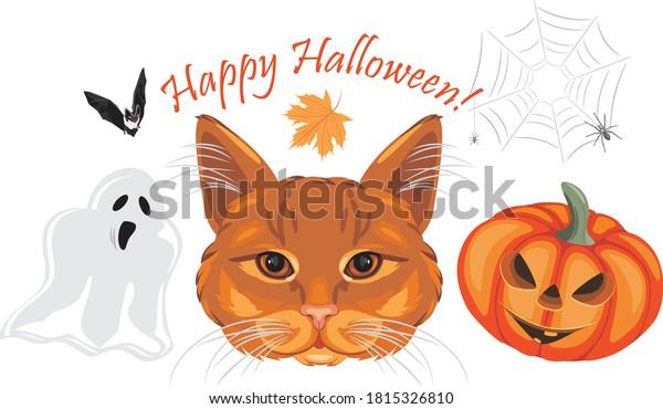 happy-halloween-funny-design-greeting-60