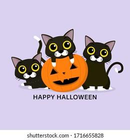 Happy Halloween greeting card with three cute black cat and spooky pumpkin. Animal holidays cartoon character. -Vector.