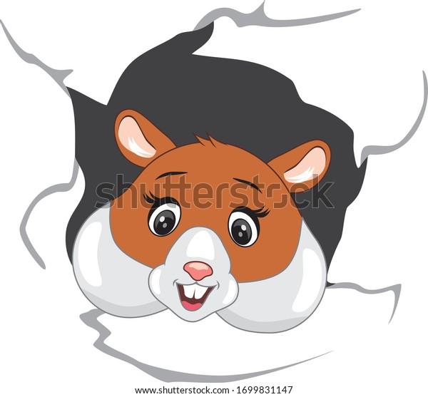happy-hamster-peeps-through-torn-600w-16