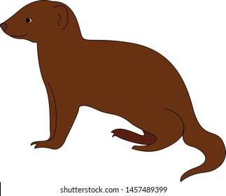 Happy mongoose, illustration, vector on white background.