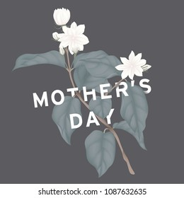 Happy mother's day greeting card design, minimalist white jasmine flowers with leaves on dark grey background