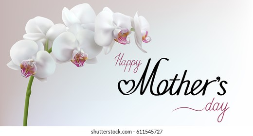 Happy Mothers Day greeting card with white realistic orchid on light gray background. Horizontal vector illustration.