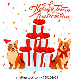 Happy New Year russian text lettering postcard with cute smiling dogs Corgi and red gift boxes on white background with stars