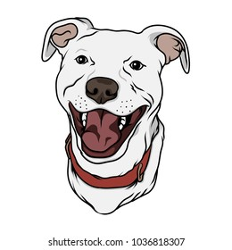 Happy Pitbull Face Handdrawn Vector Illustration