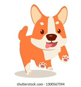 Happy puppy corgi set