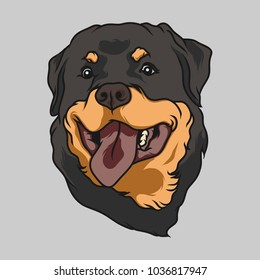 Happy Rottweiler Face Handdrawn Vector Illustration